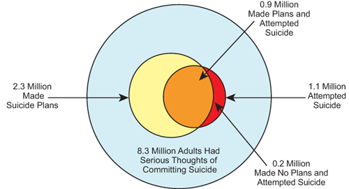 Multiple adult suicide attempts